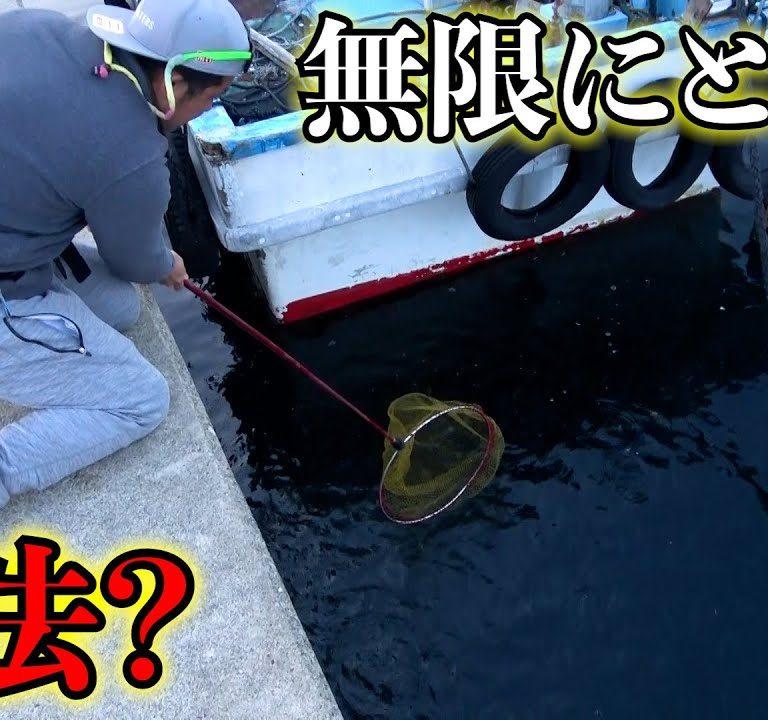 魚がタモで無限にすくい放題の神堤防はこちらです!