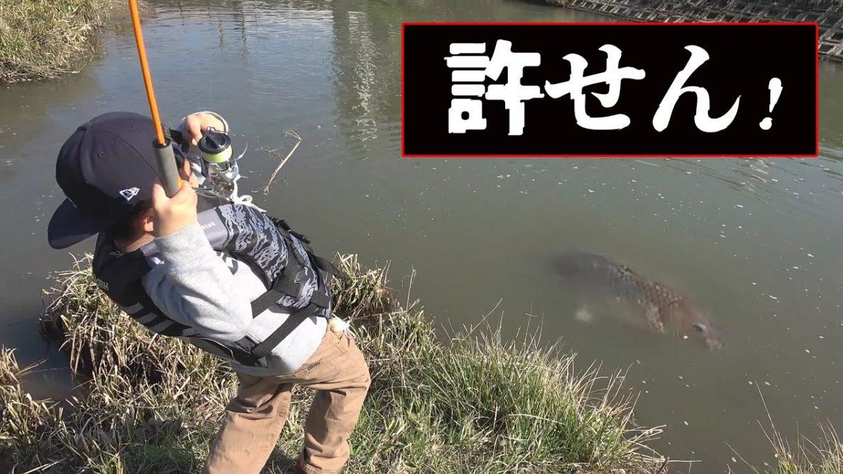 秦拓馬さんの息子ダイキ君の釣りチャンネル!パン鯉で巨大鯉と格闘!