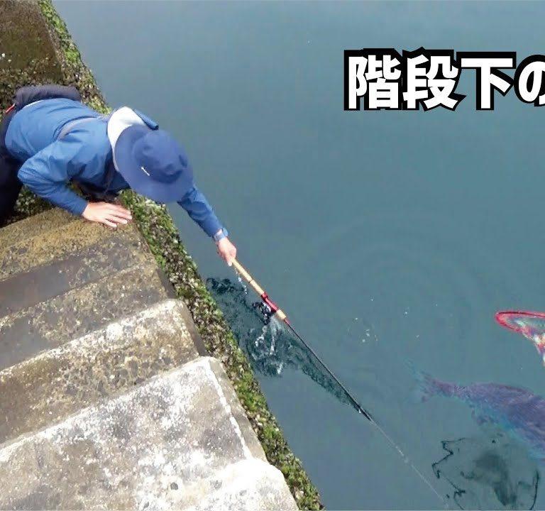 防波堤の階段下のバケモノ!引きづりこまれながらも釣りあげる一部始終
