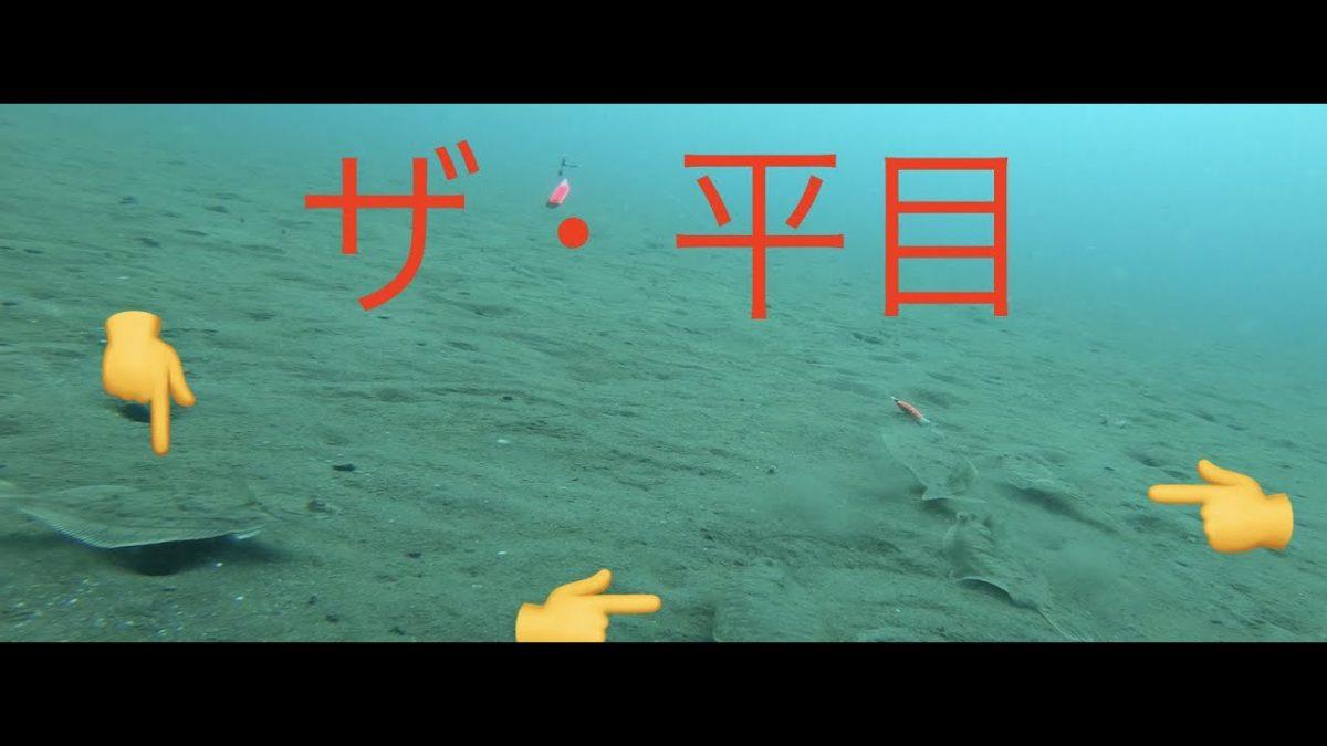 ヒラメの三角バケ釣りの水中映像!