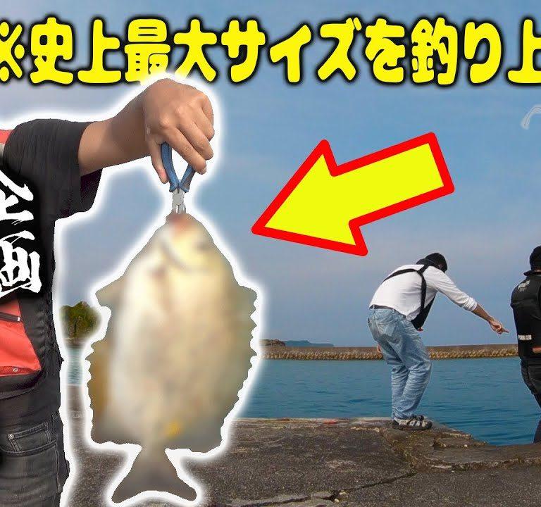 沖縄の海でよっちゃんいかで釣りるのか?やってみた