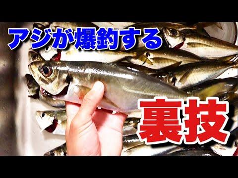本気でアジ釣りたい人必見爆釣アジングの裏技公開!!