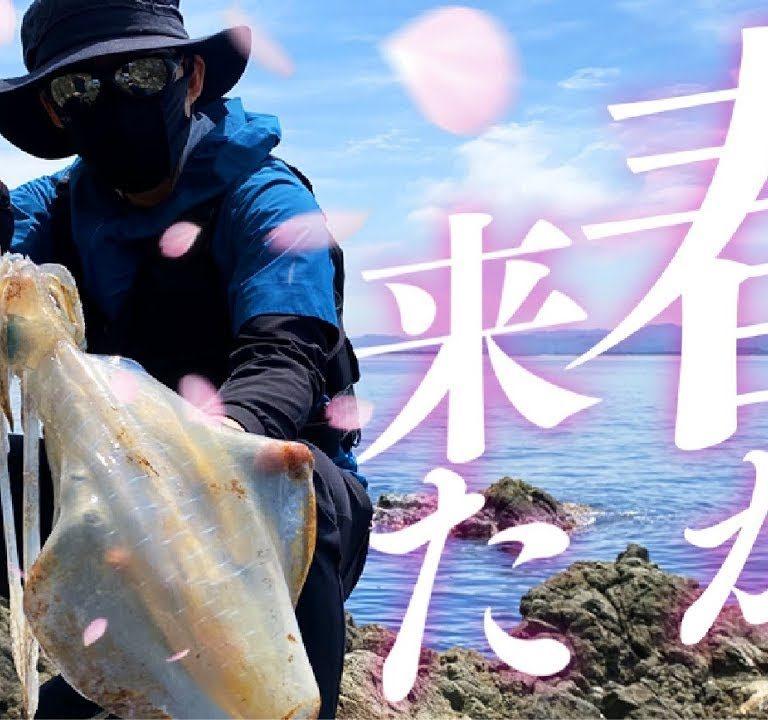 エギング超激戦区できっちりとキロオーバーを釣り上げる主の手元がわかる動画