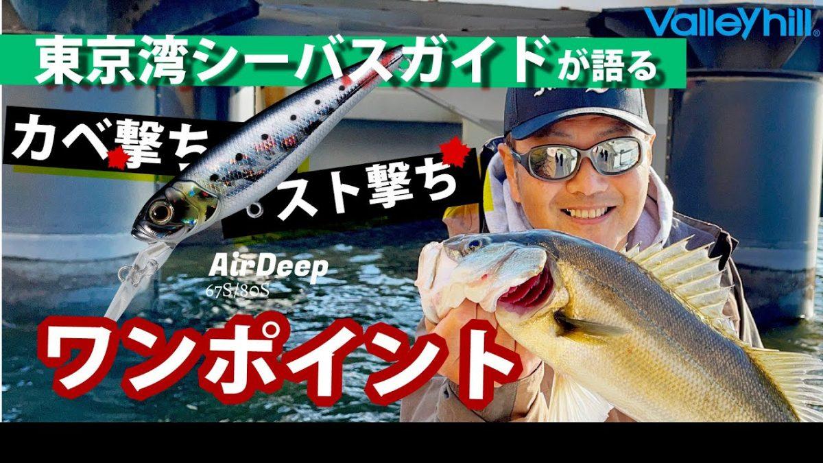 東京湾ガイド池田キャプテンが教えるボートシーバスのカベ撃ち・スト撃ち講座