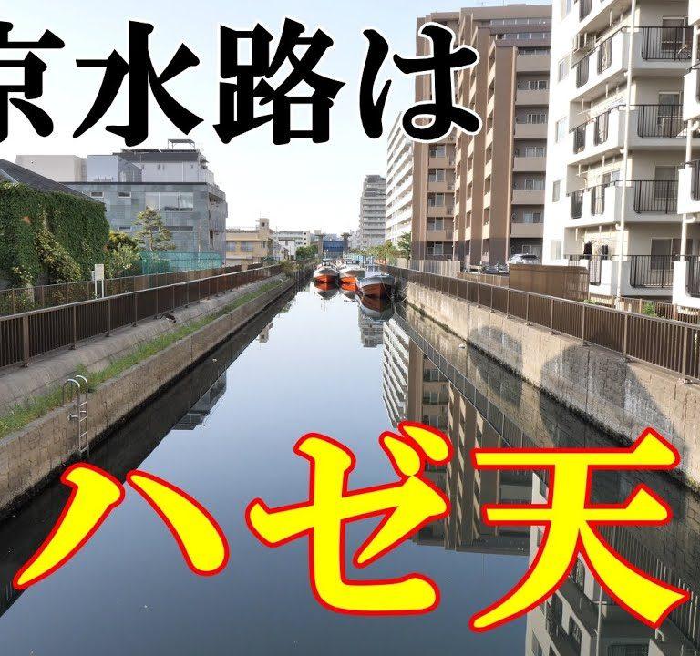 5月に!?東京の水路はハゼ天国か?を検証動画