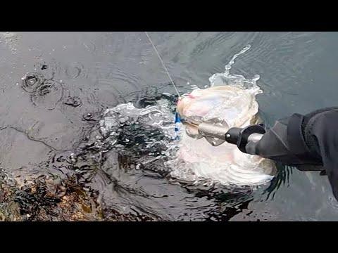 春の大物爆釣!年に数回しかこないXデーに釣れたものとは…