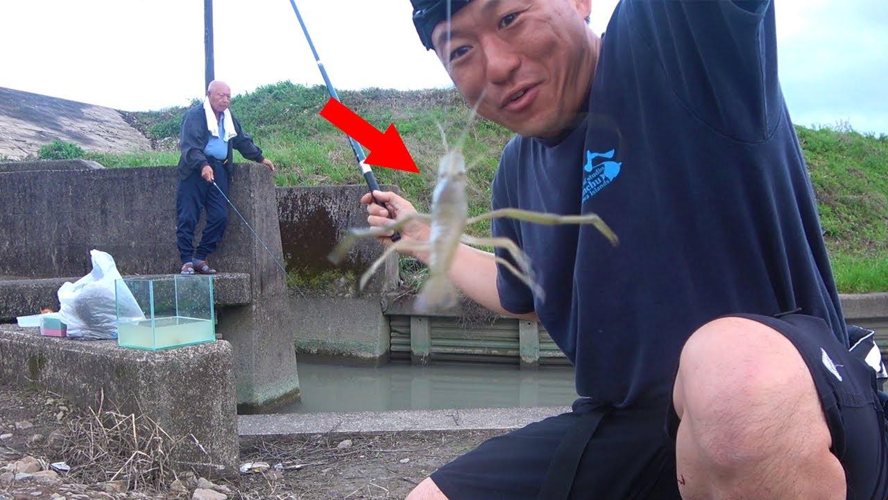 親子で初めて手長エビ釣りに行ってみたら人生最大級が釣れた!!