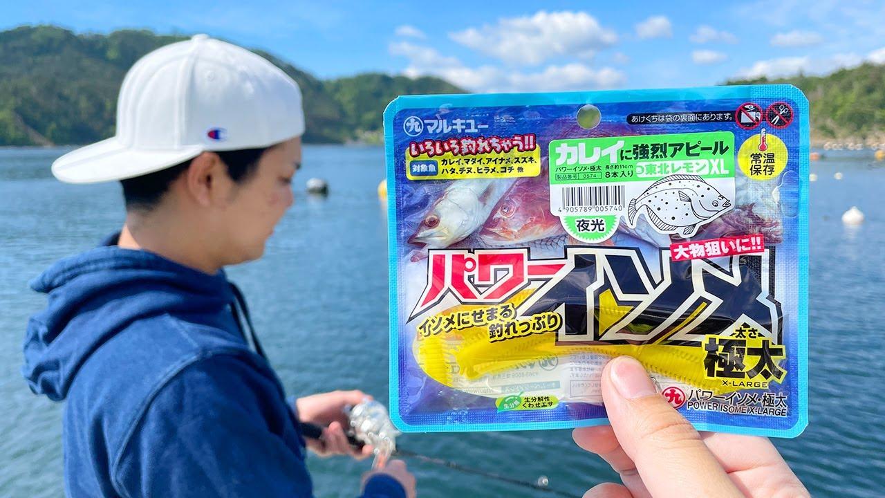 【検証】パワーイソメで「カレイ釣り」は成立するのか試してみた