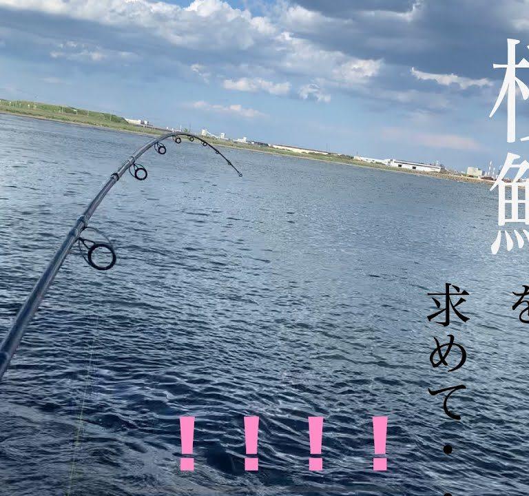 初心者用の竿とリール(鮭釣り用)でサクラマスを狙った結果!衝撃の展開