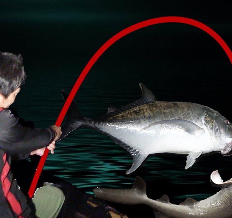 一夜にしてサメとGTを釣りました【宮古島VS石垣島2021ver #5